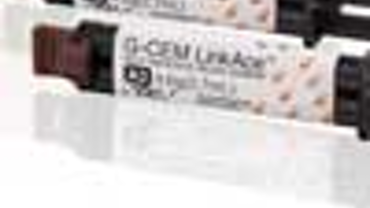Content Dam Diq Online Articles 2013 06 Gcamerica Linkace100