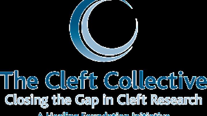 Content Dam Diq Online Articles 2015 07 Cleftcollective