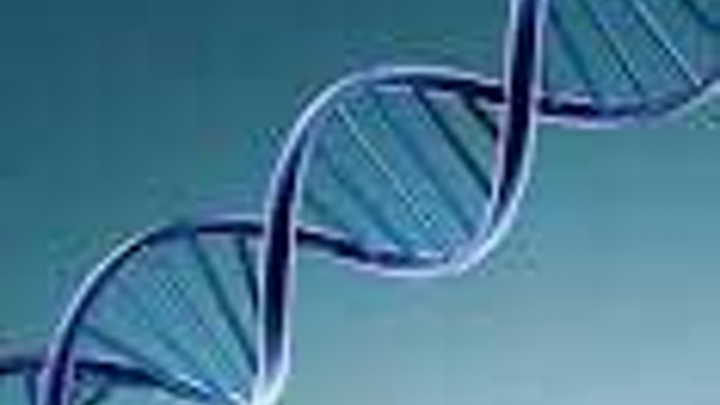 Dna Fo