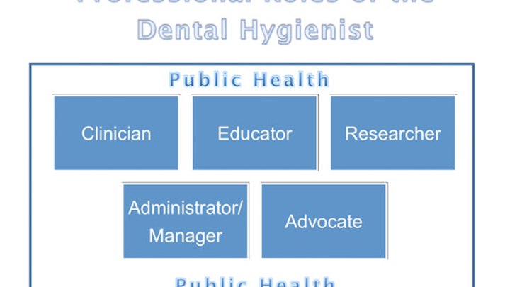Roles Of Hygienist Fo