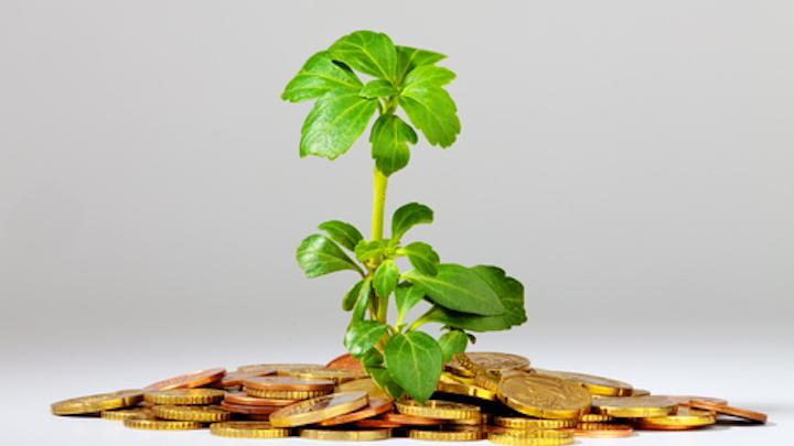 Content Dam Diq Online Articles 2016 03 Tree Money
