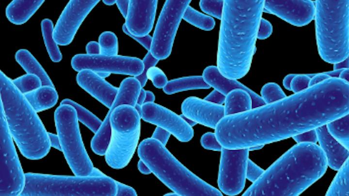 Content Dam Diq Online Articles 2017 03 Blue Bacteria Dreamstime Thumb