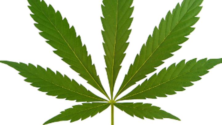Content Dam Diq Online Articles 2018 01 Marijuana Leaf 1