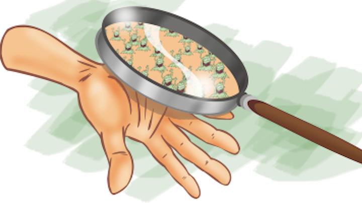 Content Dam Diq Online Articles 2018 04 Hand Germs 1