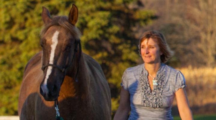 Content Dam Diq Online Articles 2018 08 Horse Therapy 1