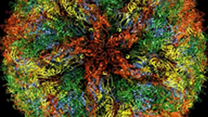 Content Dam De Print Articles Volume 106 Issue 5 Zika Virus Colors Tmb