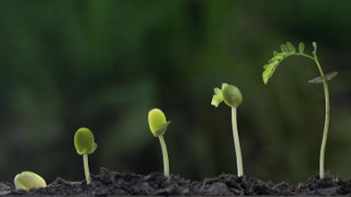 Content Dam Diq Online Articles 2019 01 Personal Growth Whiteley Diqthumb