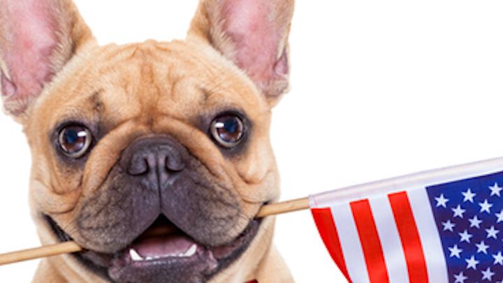 Content Dam Diq En Articles 2016 11 10 Election Day Social Post Ideas For Dental Practices Leftcolumn Article Thumbnailimage File